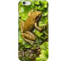 The FROG 2 - iPhone iPhone Case/Skin