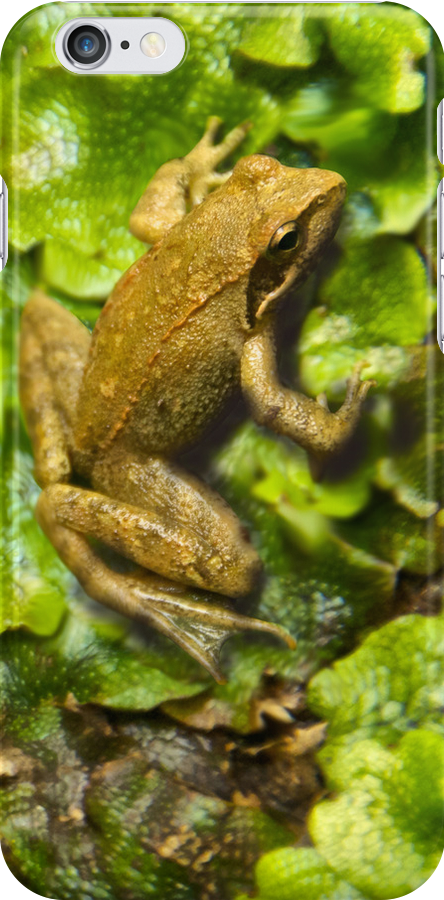 The FROG 2 - iPhone by Zefiro