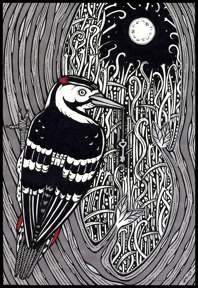 Woodpecker by Anita Inverarity