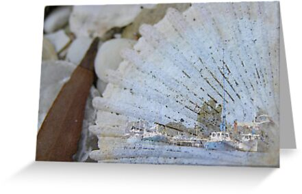Fishing Wharf on Shell by Michelle Ricketts