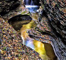 Deep In the Glen - Watkins Glen, NY by Kathy Weaver