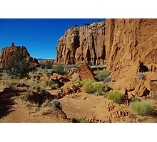 Kodachrome rocks, Utah Photographic Print