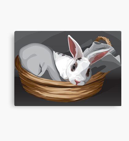Odin Bunny Canvas Print