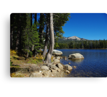 Beautiful Ice House Reservoir, California Canvas Print