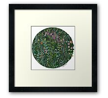 Plant circle - color  Framed Print
