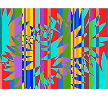 Tropical Burst Abstract Photographic Print