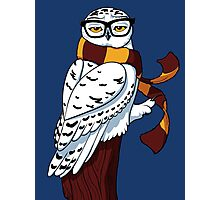 Hipster Owl Photographic Print