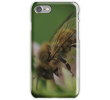 Macro bee on a flower iPhone Case/Skin