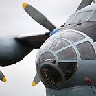 Military transport aircraft AN12 by mrivserg
