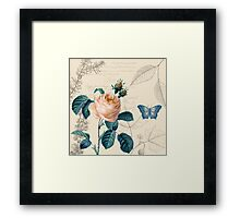Peach Rose Vintage Framed Print