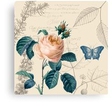 Peach Rose Vintage Canvas Print