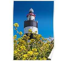 Hook Lighthouse, County Wexford, Ireland Poster