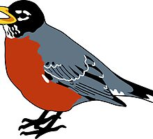 American Robin Bird by Krista Casal