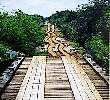 Pantanal - Brasil by gluca