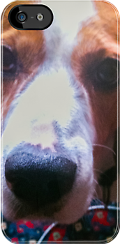 Dog Face [ iPad / iPod / iPhone Case ] by Mauricio Santana