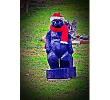 Ho Ho Growl Photographic Print