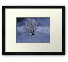 -GLACE IN PLACE  1 - ITALY EUROPA- VETRINA RB EXPLORE 30 DICEMBRE 2012 --- Framed Print