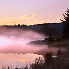 Misty Dawn Spruce Knob Lake by Deb Snelson