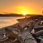 Sunrise at the Spit by Ron53