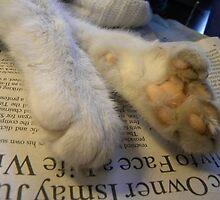 Sweet Feet by Carolyn Clark
