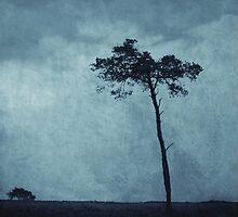 Trees by Anne Staub