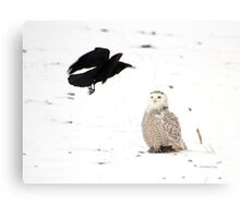 The crow and the owl Canvas Print