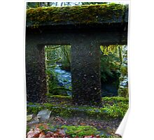Rain Forest Bridges Poster