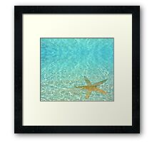 Sea Treasures Framed Print