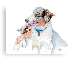 Australian Shepherd Matrix Canvas Print
