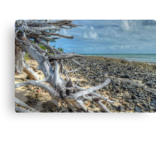 St Andrews Beach at Yamacraw on Eastern Nassau in The Bahamas Canvas Print