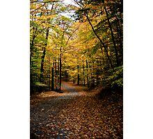 Adirondacks in Autumn Photographic Print