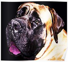 Mastiff Dog Art - Size Matters Poster