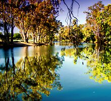 Wolloundry Lagoon, Wagga Wagga NSW by Bevlea Ross