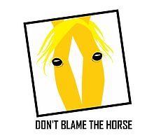 DON'T BLAME THE HORSE by Jean Gregory  Evans