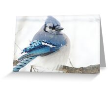 Winter Blue Puff Greeting Card