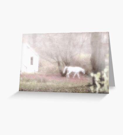 Pippin's dream white horse fantasy Greeting Card