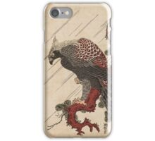 Eagle on a Pine Branch iPhone Case/Skin
