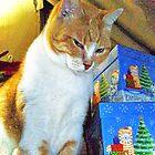 Love At Christmas by Terri Chandler