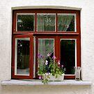 kitchen window by kchamula