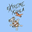 Extreme Koala- Skydiver by Colin Wells