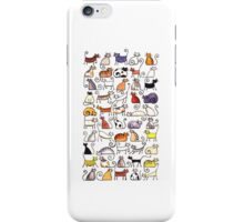 Cats, cats, cats! iPhone Case/Skin