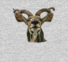 Greater African Kudu Hoodie