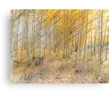 4069 Canvas Print