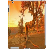 Sunny i-Pad Case iPad Case/Skin