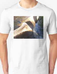 Flow Form Fountain, Rudolf Steiner College T-Shirt