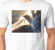 Flow Form Fountain, Rudolf Steiner College Unisex T-Shirt