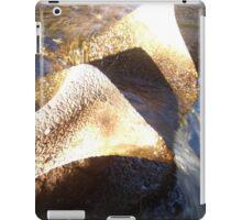 Flow Form Fountain, Rudolf Steiner College iPad Case/Skin
