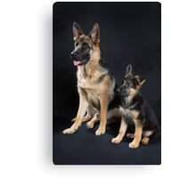 German Shepherd Pups Canvas Print