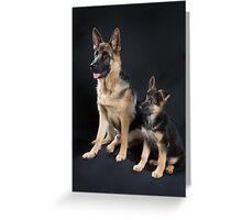 German Shepherd Pups Greeting Card