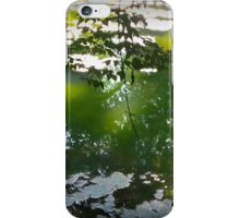 Green And White River iPhone Case/Skin